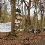 hambach-forest-germany_650x400_41511266847